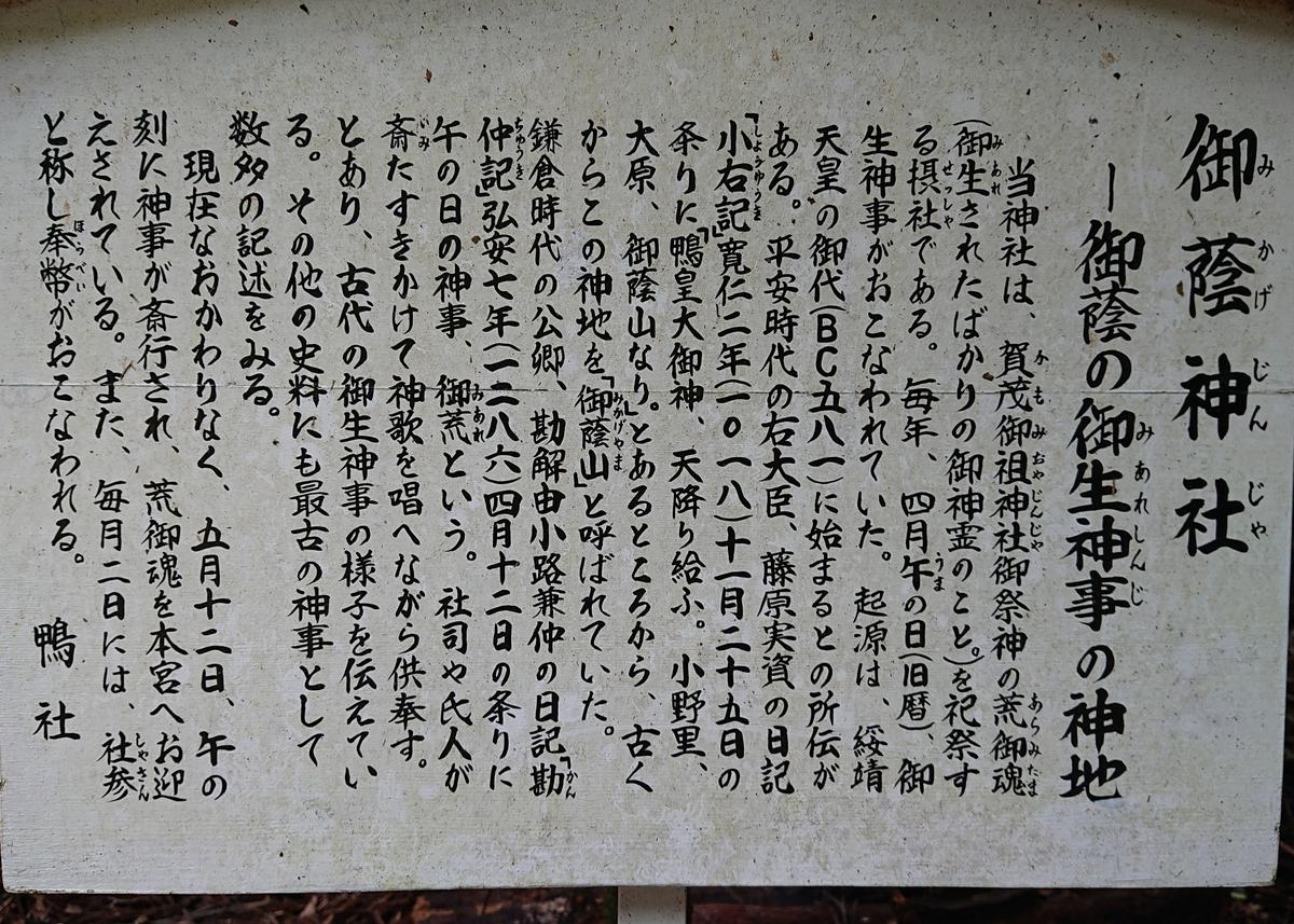 f:id:Kaimotu_Hatuji:20190725173827j:plain
