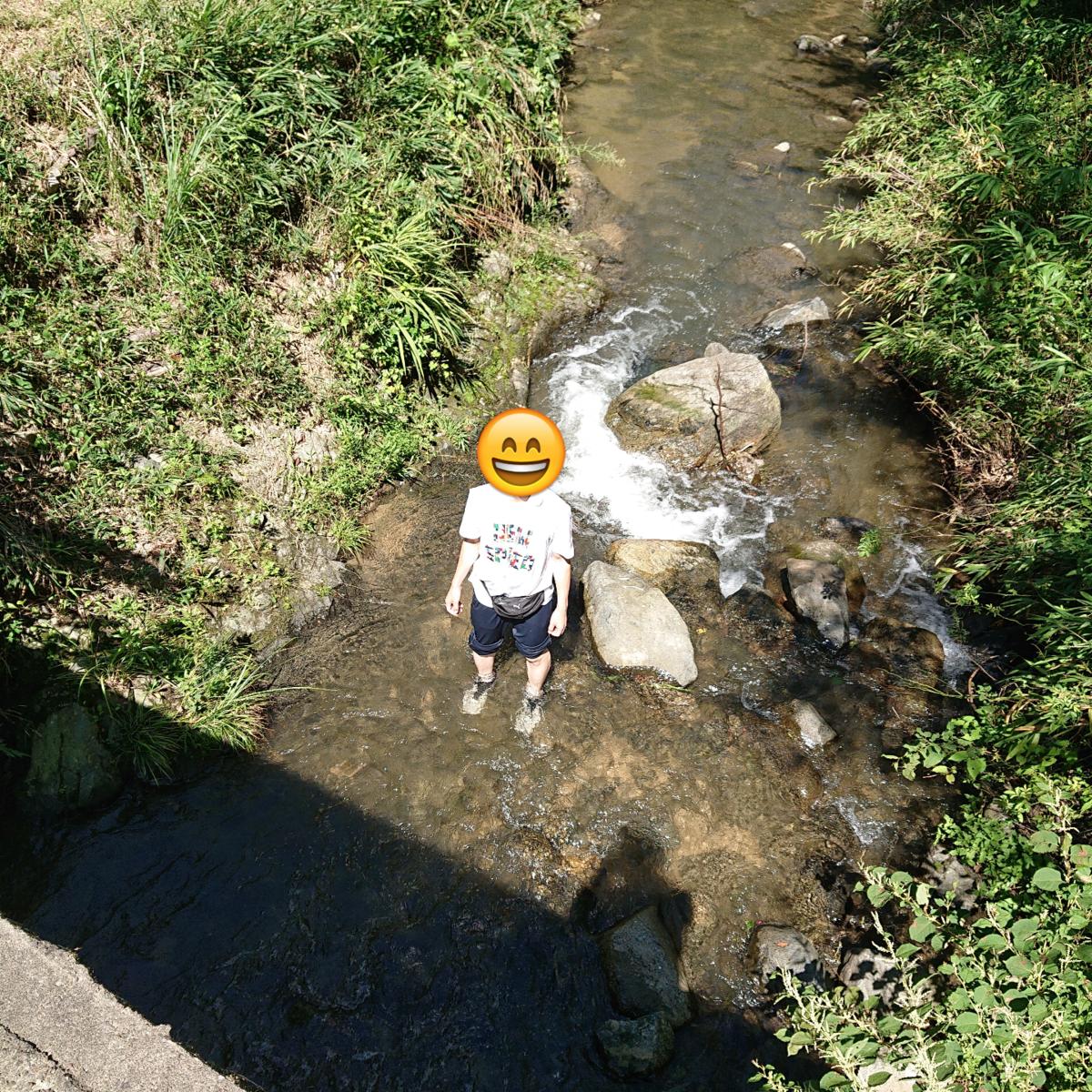 f:id:Kaimotu_Hatuji:20190909195808p:plain