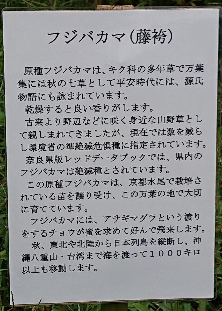 f:id:Kaimotu_Hatuji:20190922085517j:plain