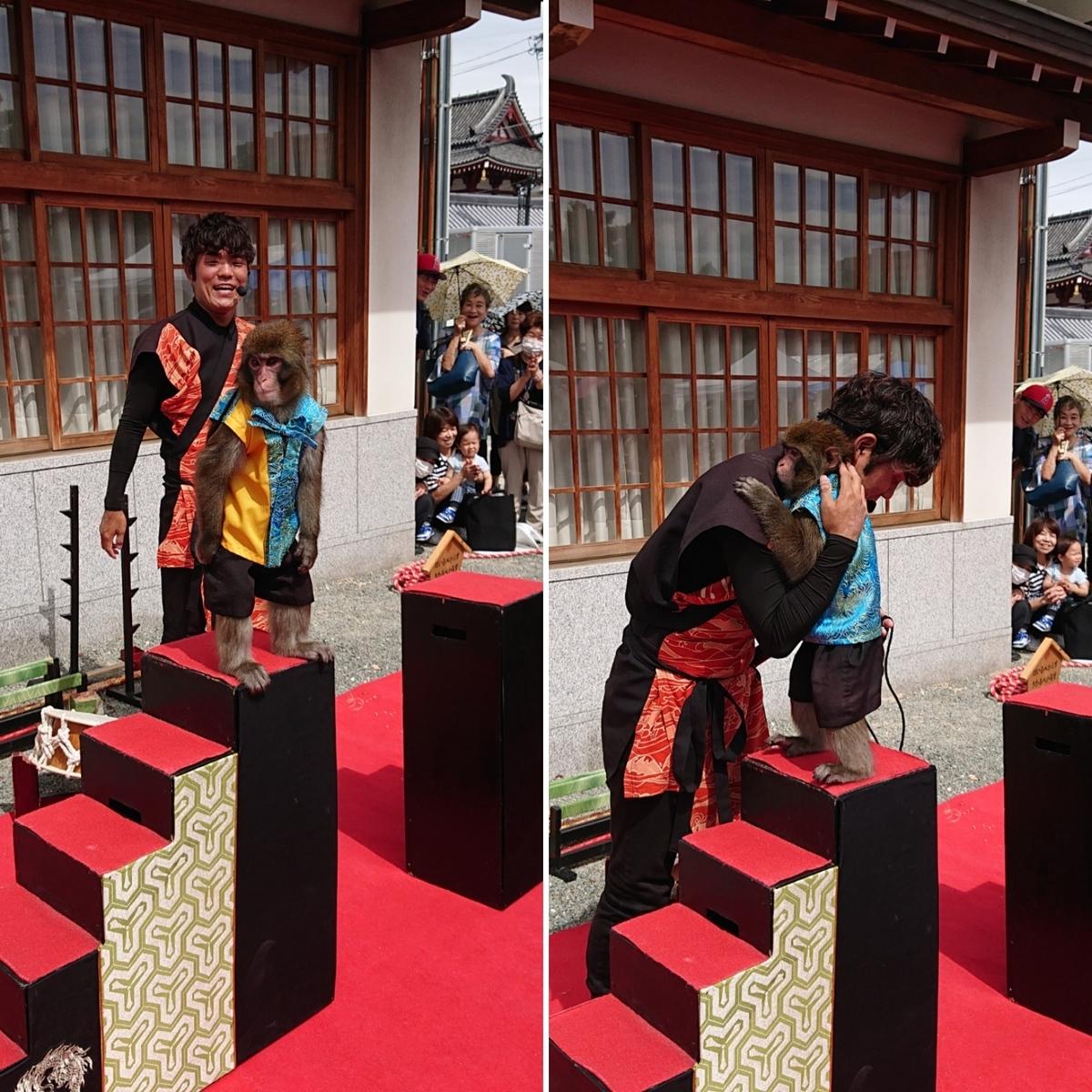 f:id:Kaimotu_Hatuji:20190923163350j:plain