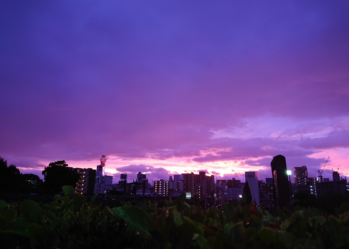f:id:Kaimotu_Hatuji:20191013004826j:plain