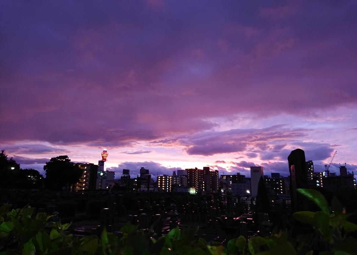 f:id:Kaimotu_Hatuji:20191013004912j:plain