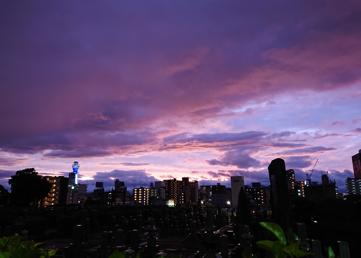 f:id:Kaimotu_Hatuji:20191013004935j:plain