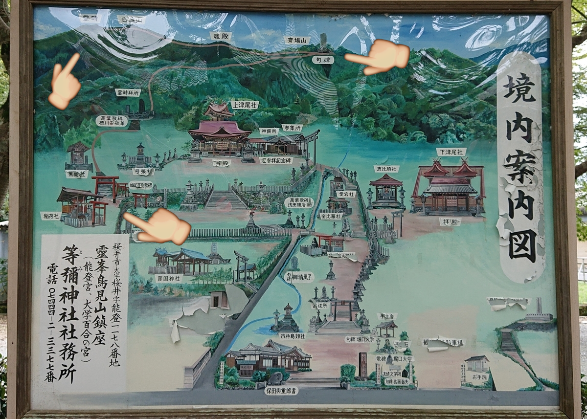 f:id:Kaimotu_Hatuji:20191016181230p:plain