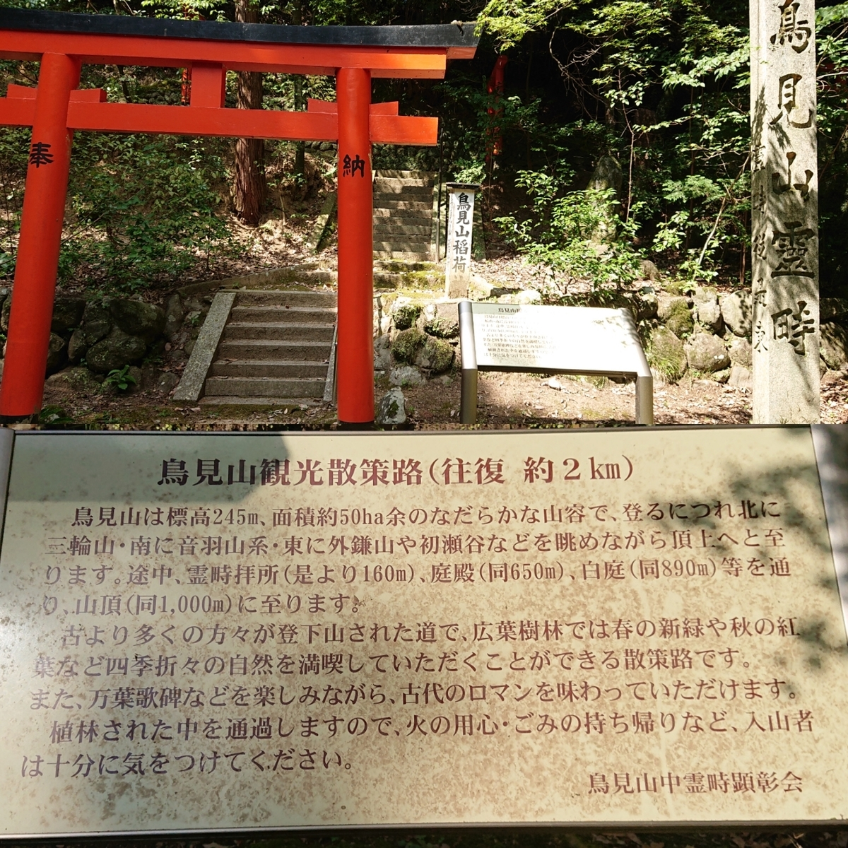 f:id:Kaimotu_Hatuji:20191016181300j:plain