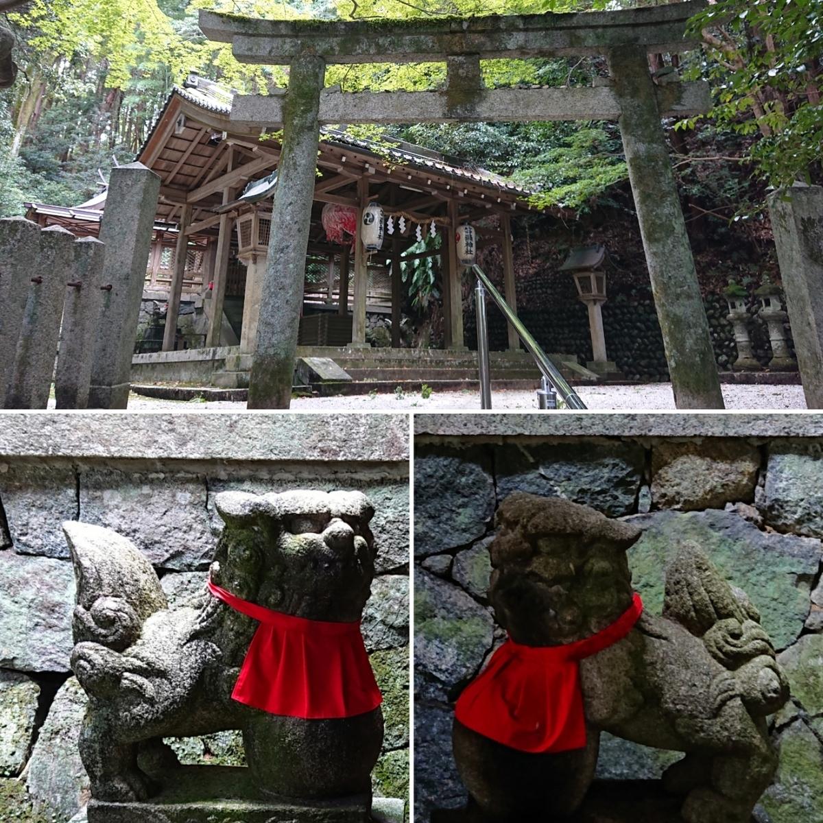 f:id:Kaimotu_Hatuji:20191019162442j:plain