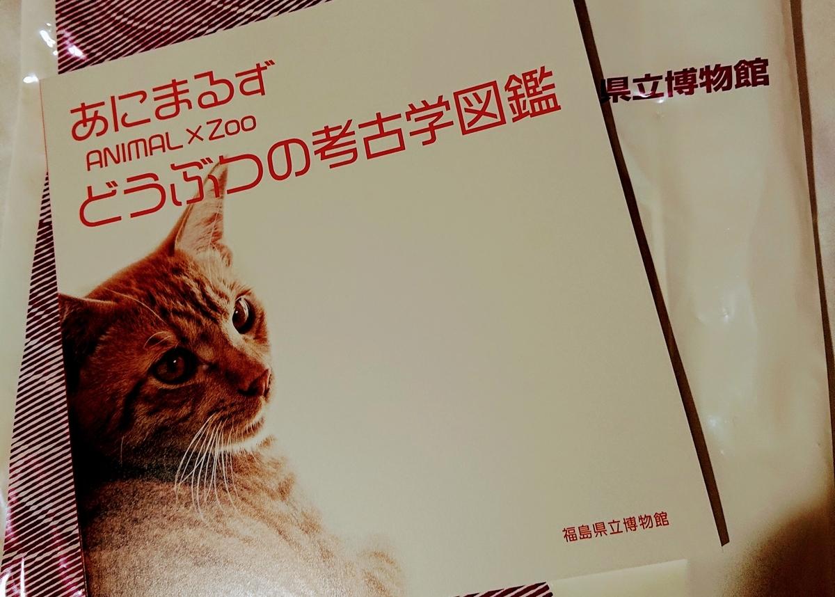 f:id:Kaimotu_Hatuji:20191110193522j:plain