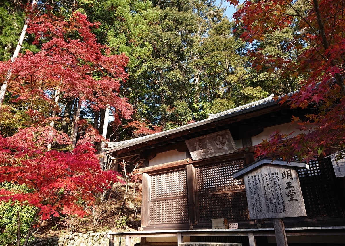 f:id:Kaimotu_Hatuji:20191117191053j:plain