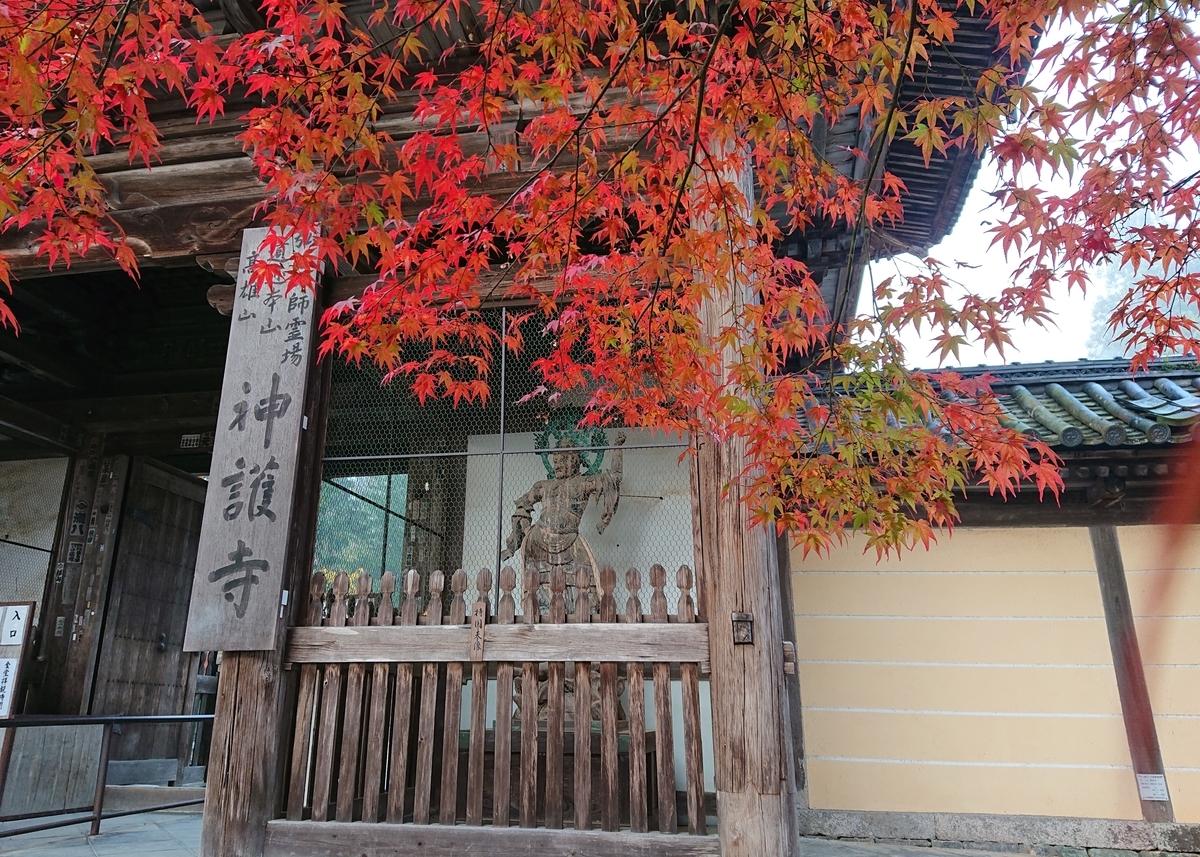 f:id:Kaimotu_Hatuji:20191117191301j:plain