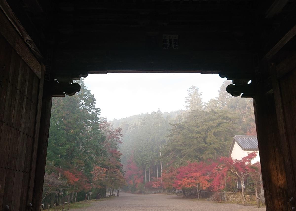 f:id:Kaimotu_Hatuji:20191117191327j:plain