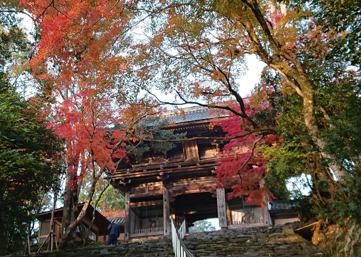 f:id:Kaimotu_Hatuji:20191117191415j:plain