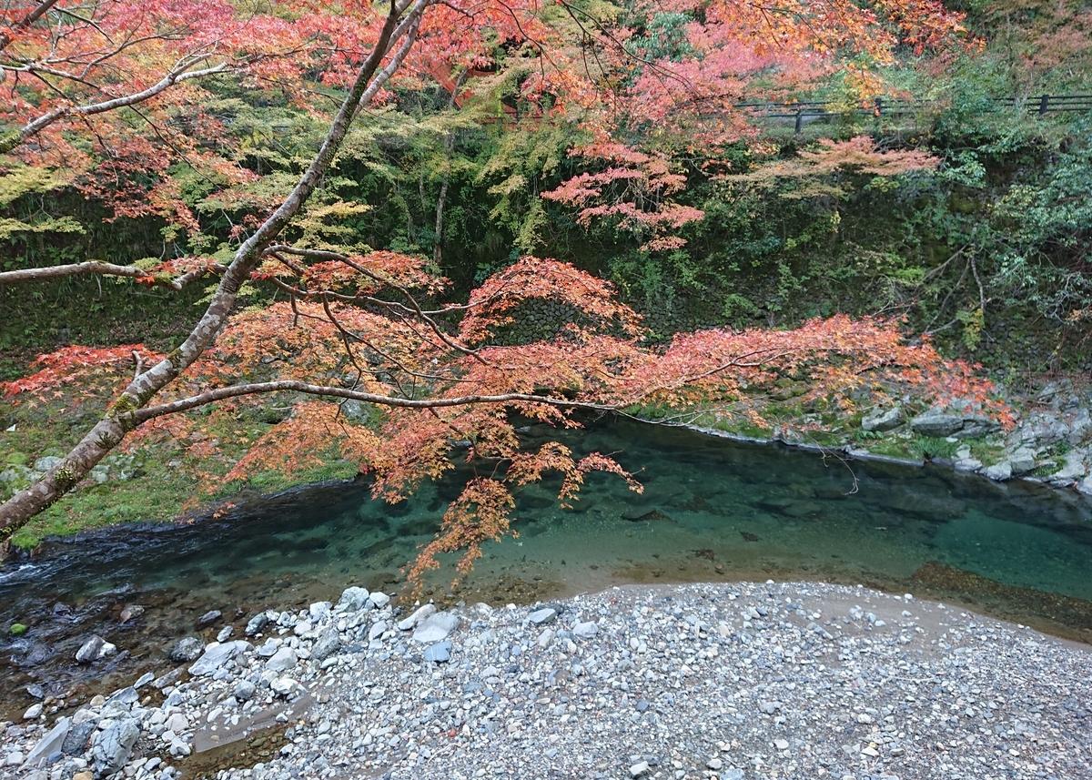 f:id:Kaimotu_Hatuji:20191118160325j:plain