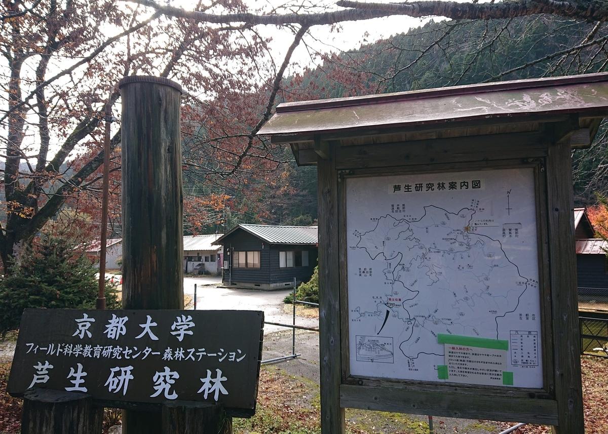 f:id:Kaimotu_Hatuji:20191201035610j:plain