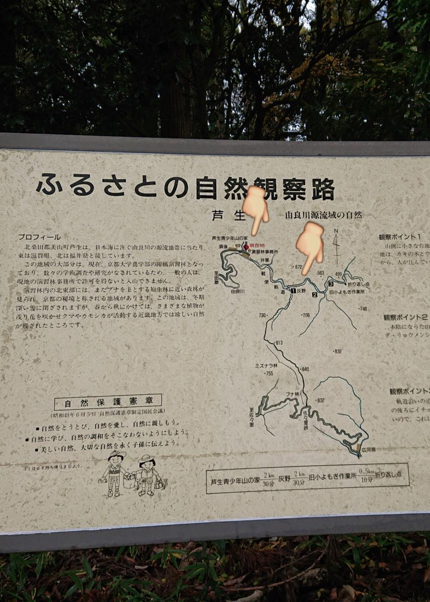 f:id:Kaimotu_Hatuji:20191201035651p:plain