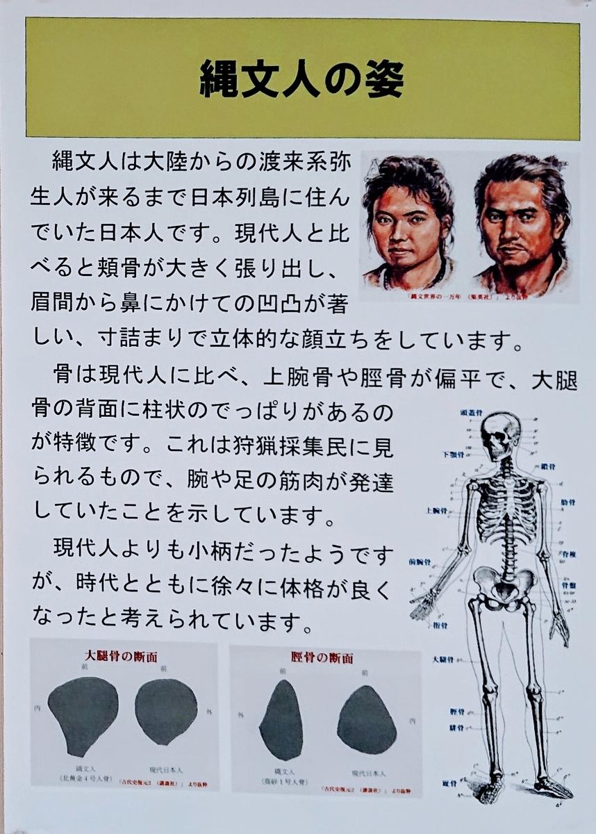 f:id:Kaimotu_Hatuji:20191204132750j:plain