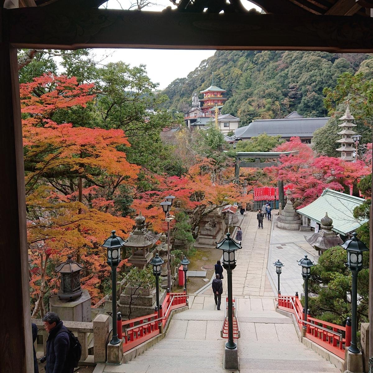 f:id:Kaimotu_Hatuji:20191208184428j:plain
