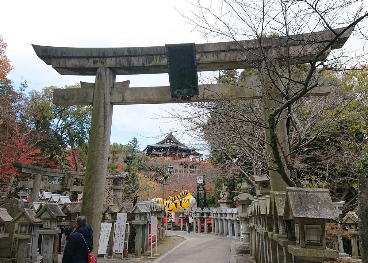 f:id:Kaimotu_Hatuji:20191208190708j:plain