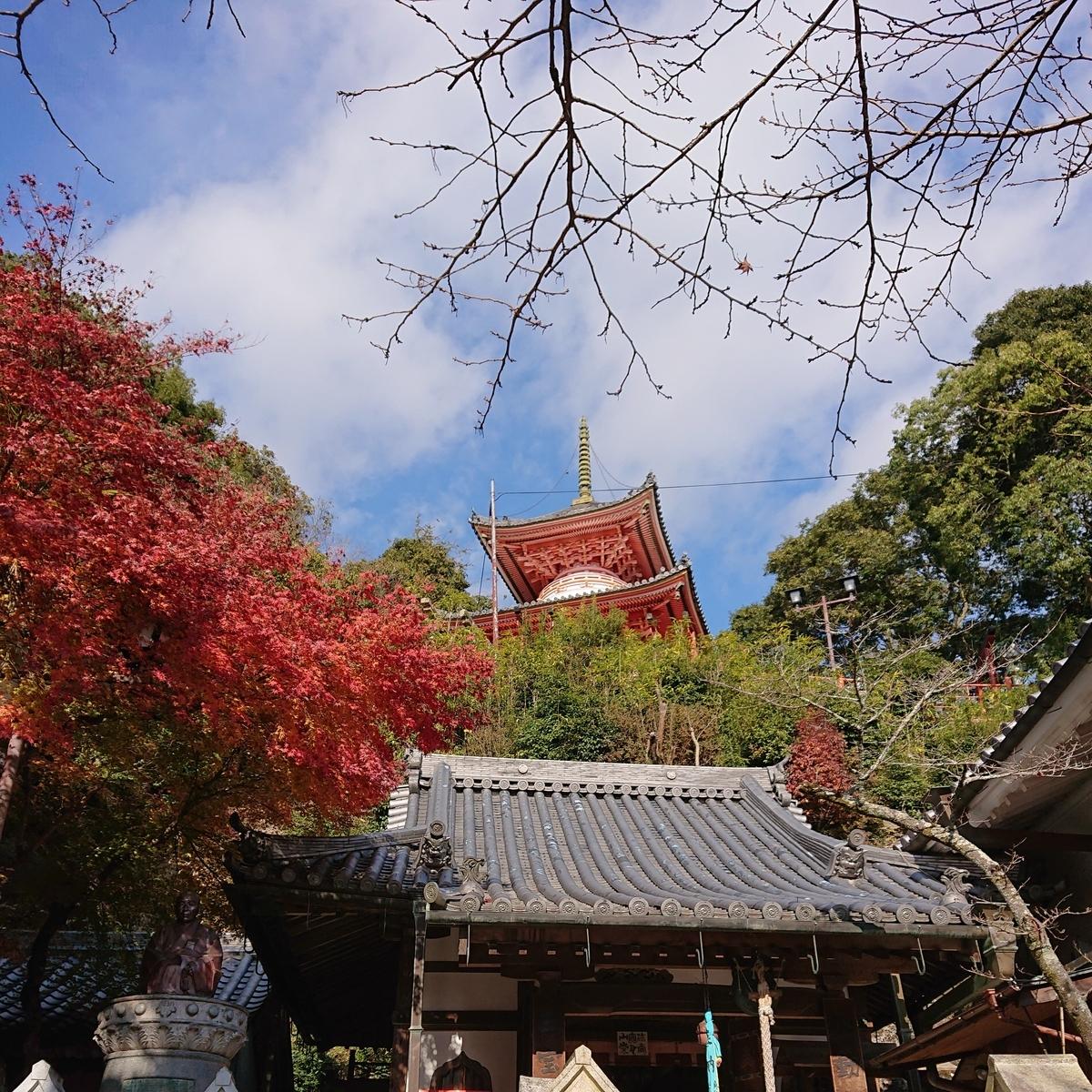 f:id:Kaimotu_Hatuji:20191208195155j:plain
