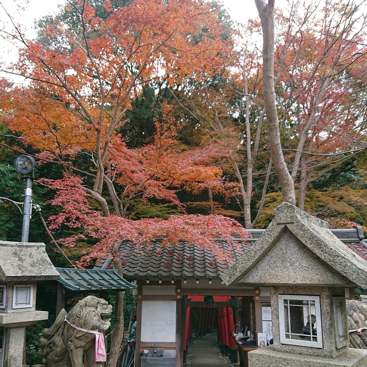 f:id:Kaimotu_Hatuji:20191208195603j:plain