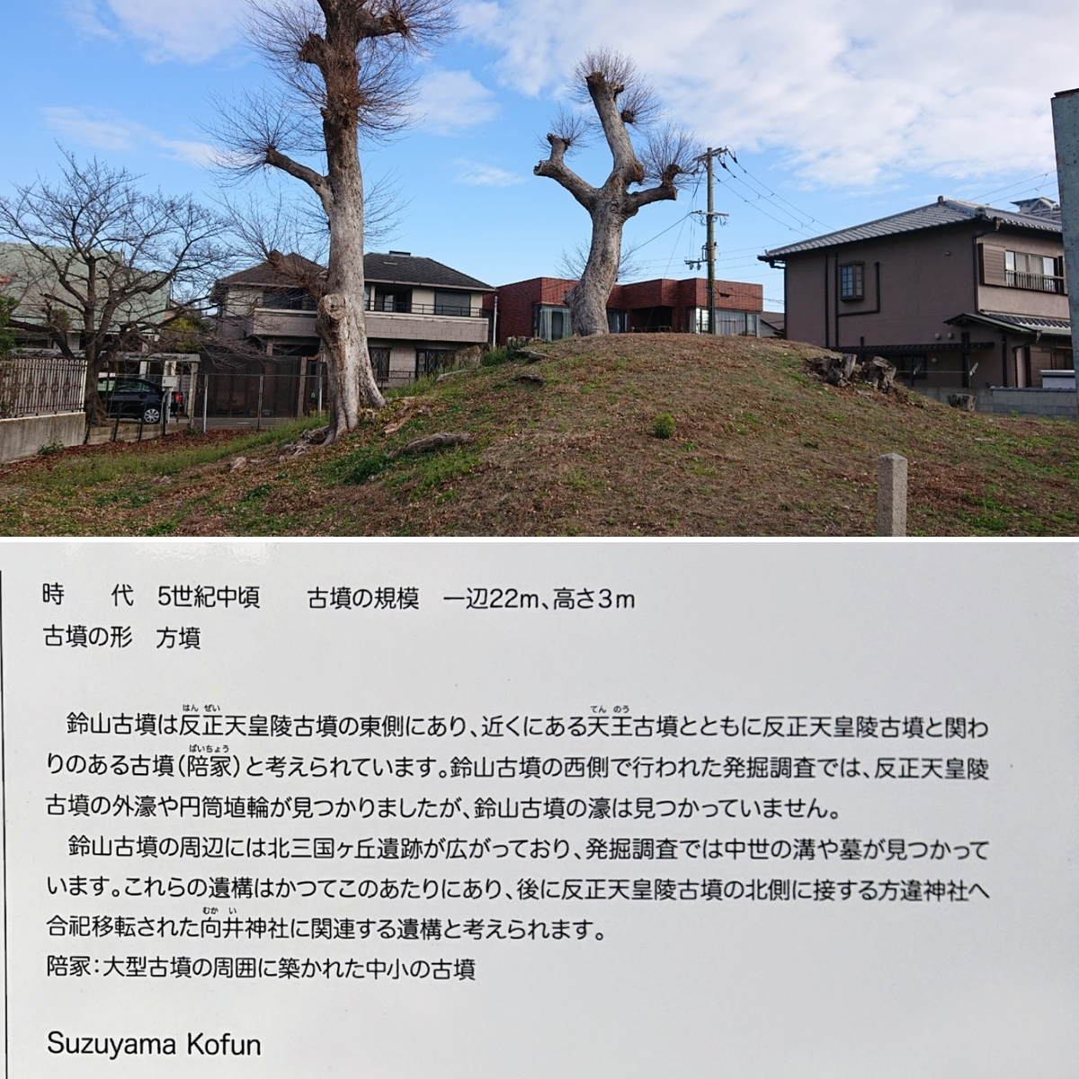 f:id:Kaimotu_Hatuji:20200105183126j:plain
