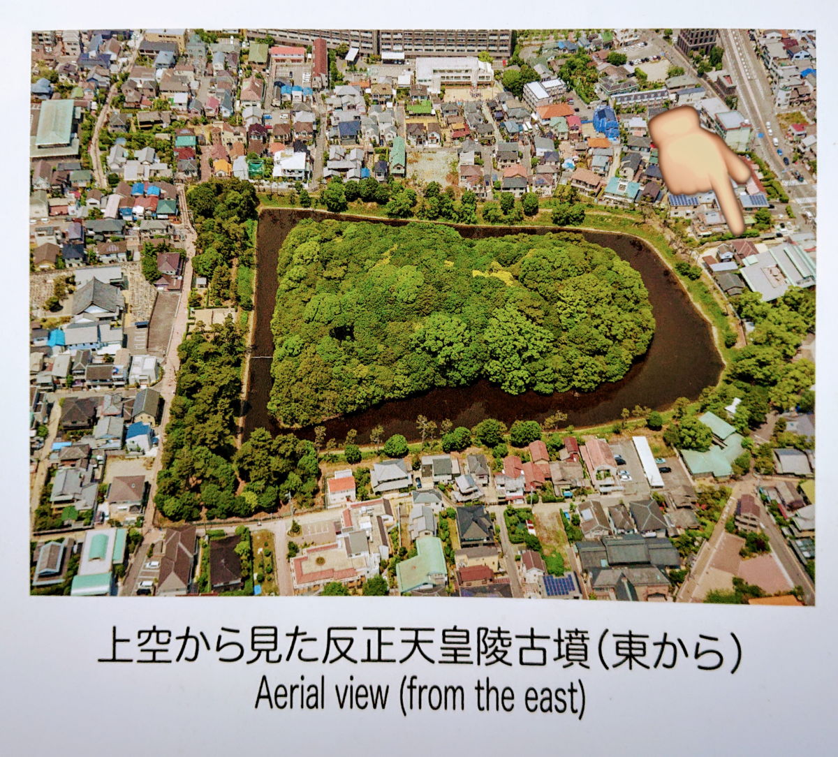 f:id:Kaimotu_Hatuji:20200105190848p:plain