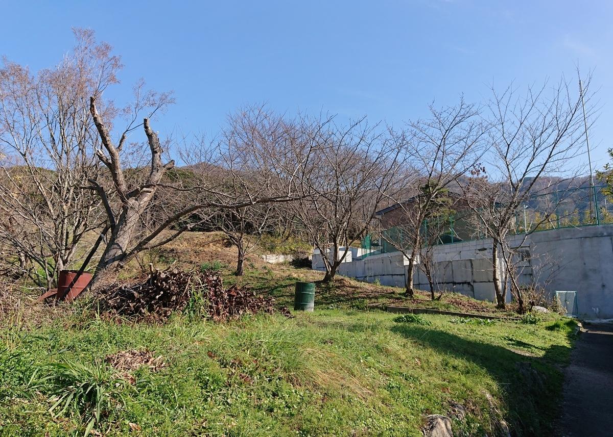 f:id:Kaimotu_Hatuji:20200116191430j:plain