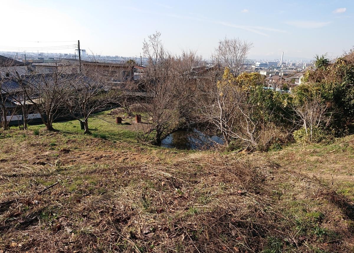 f:id:Kaimotu_Hatuji:20200116191455j:plain
