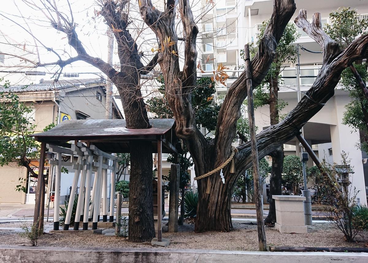 f:id:Kaimotu_Hatuji:20200118183526j:plain