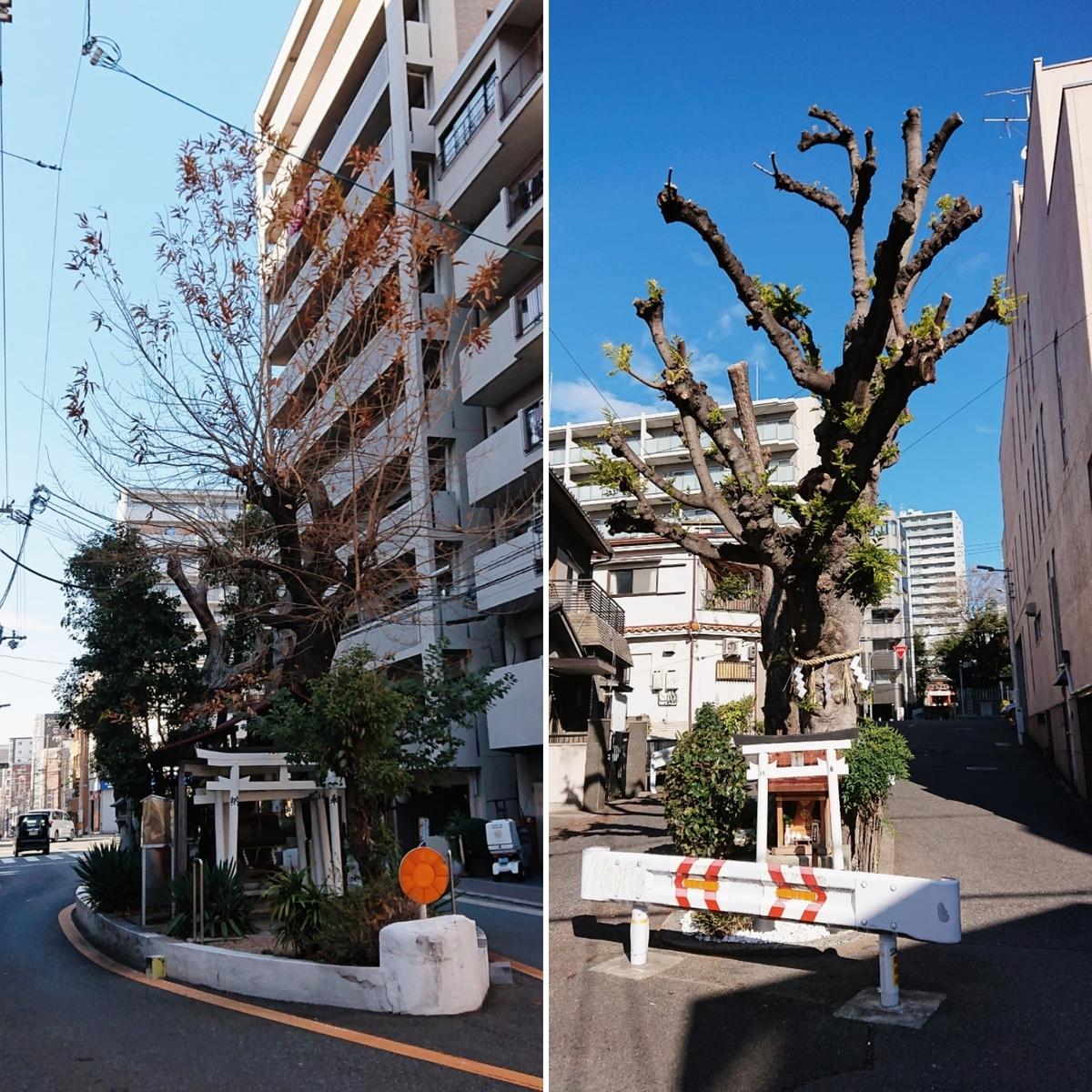 f:id:Kaimotu_Hatuji:20200118201256j:plain