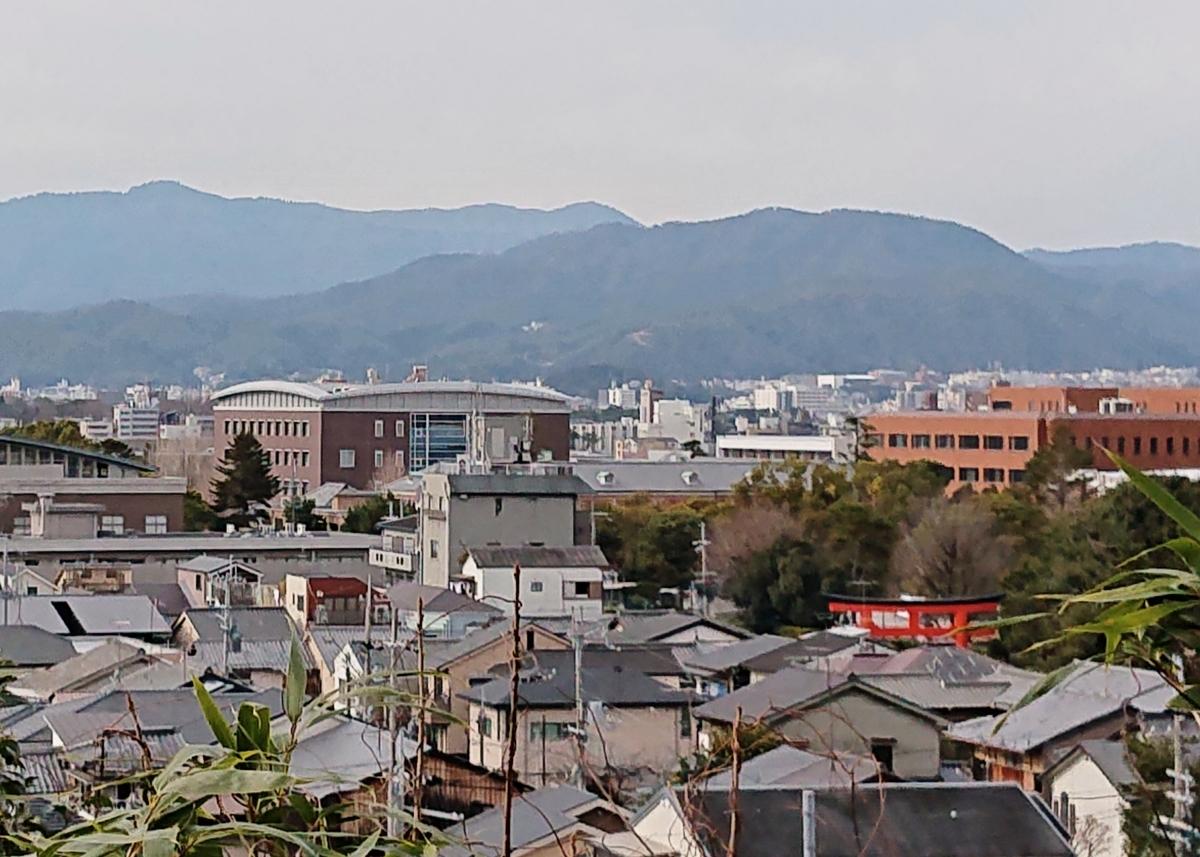 f:id:Kaimotu_Hatuji:20200119171506j:plain
