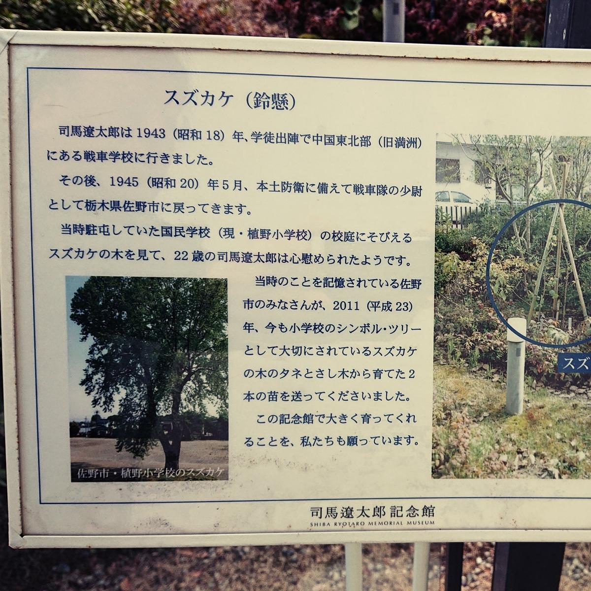 f:id:Kaimotu_Hatuji:20200209164524j:plain