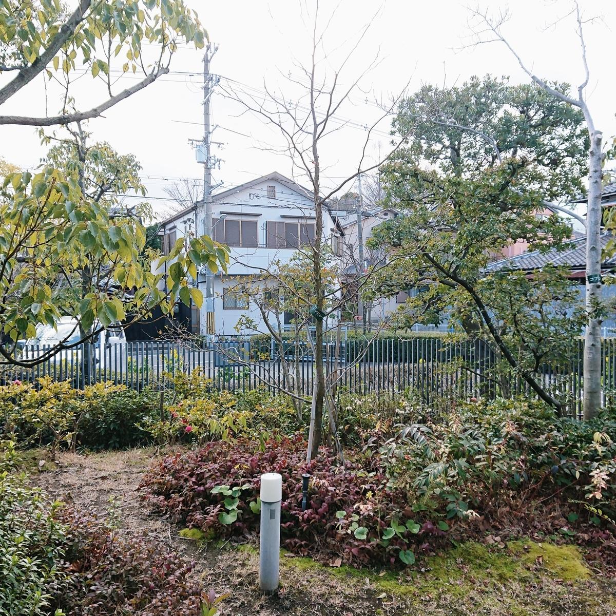 f:id:Kaimotu_Hatuji:20200209164541j:plain