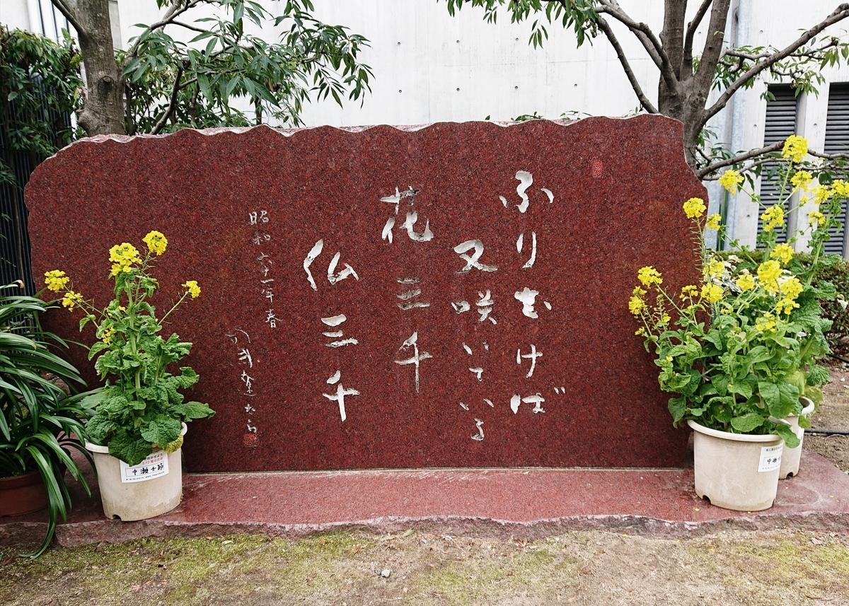 f:id:Kaimotu_Hatuji:20200209164600j:plain