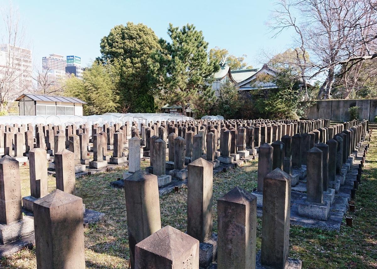 f:id:Kaimotu_Hatuji:20200214183146j:plain