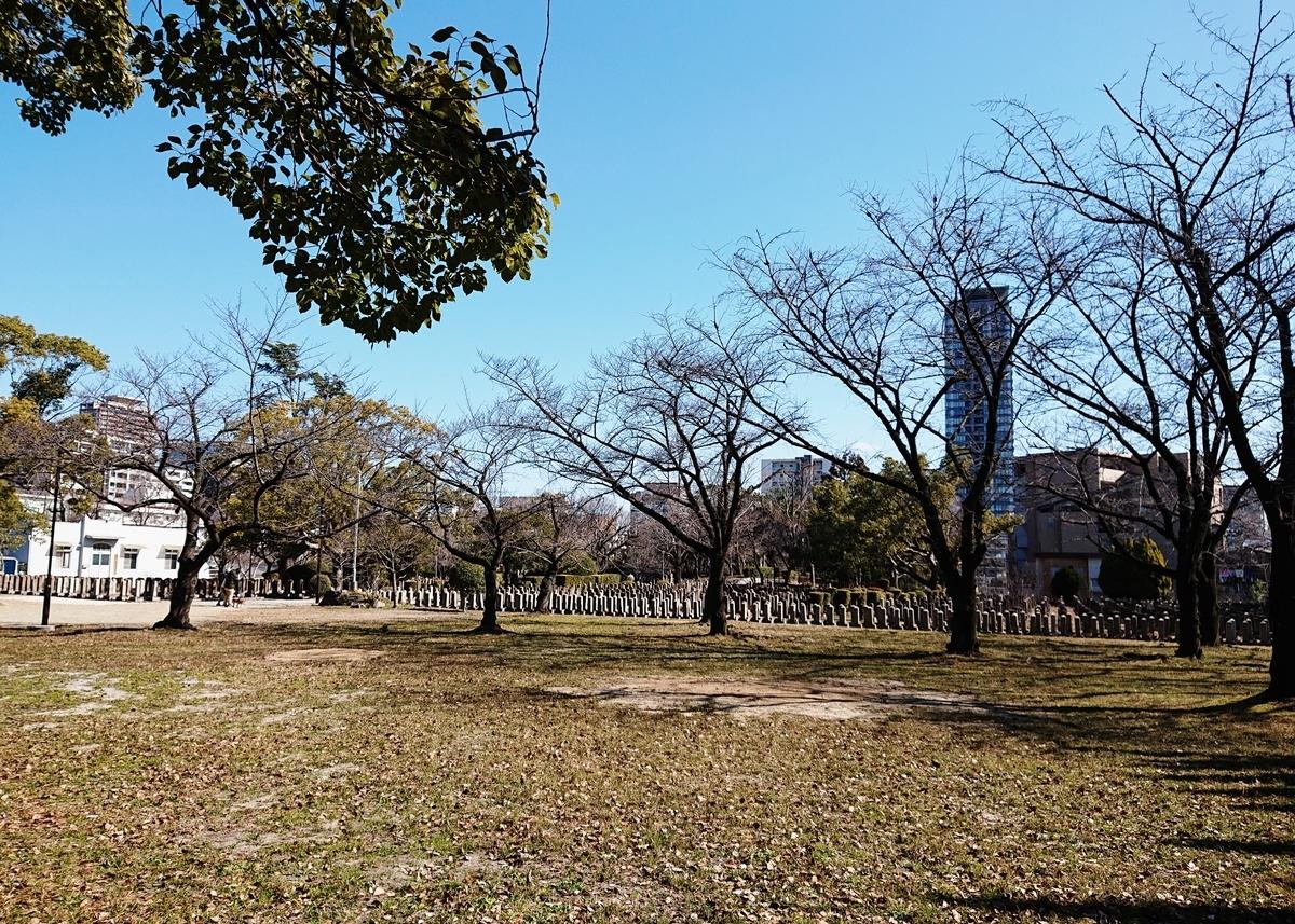 f:id:Kaimotu_Hatuji:20200215182243j:plain