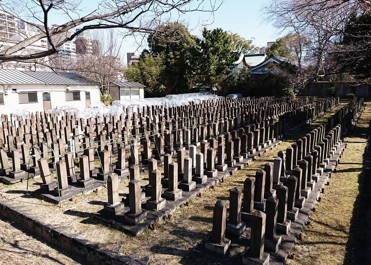 f:id:Kaimotu_Hatuji:20200215182528j:plain