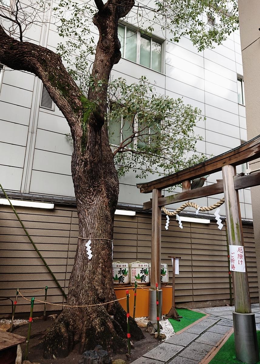 f:id:Kaimotu_Hatuji:20200301114454j:plain