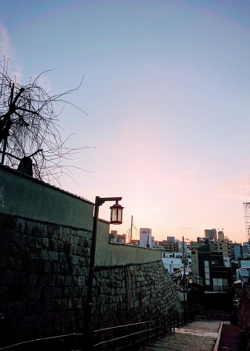 f:id:Kaimotu_Hatuji:20200304155327j:plain