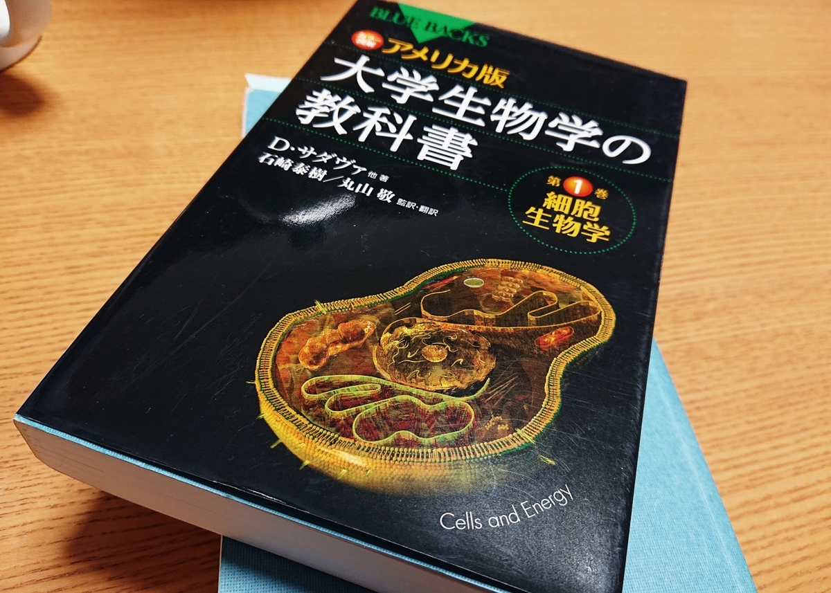 f:id:Kaimotu_Hatuji:20200319191210j:plain