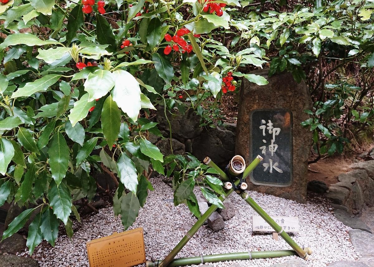 f:id:Kaimotu_Hatuji:20200322184552j:plain