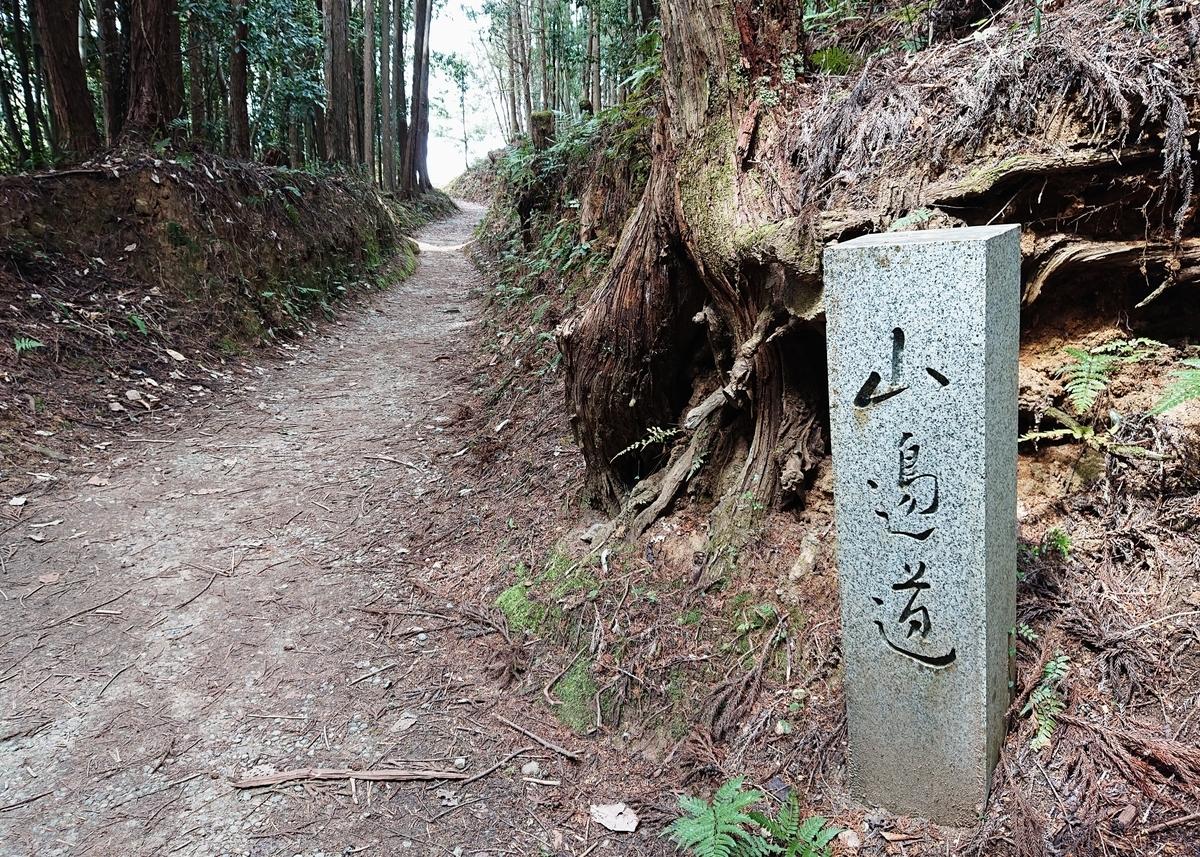 f:id:Kaimotu_Hatuji:20200328183939j:plain