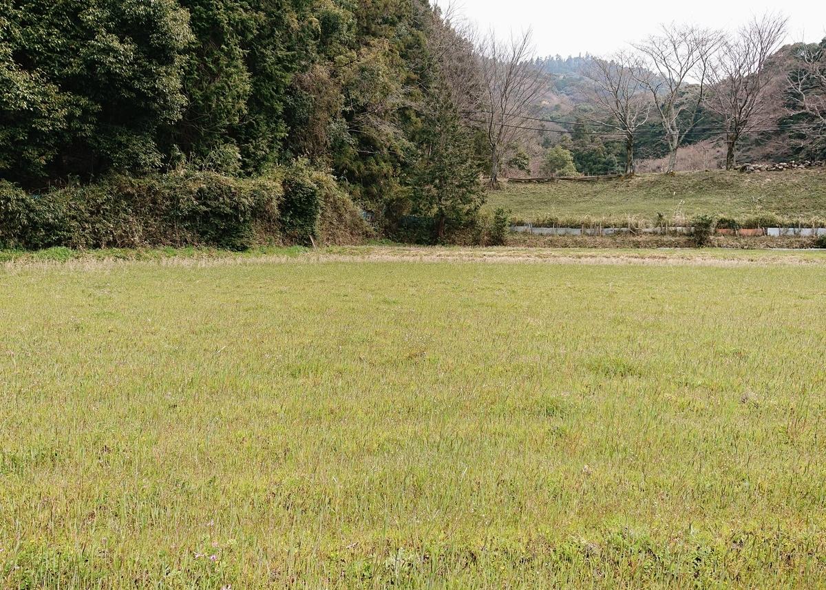 f:id:Kaimotu_Hatuji:20200328185612j:plain