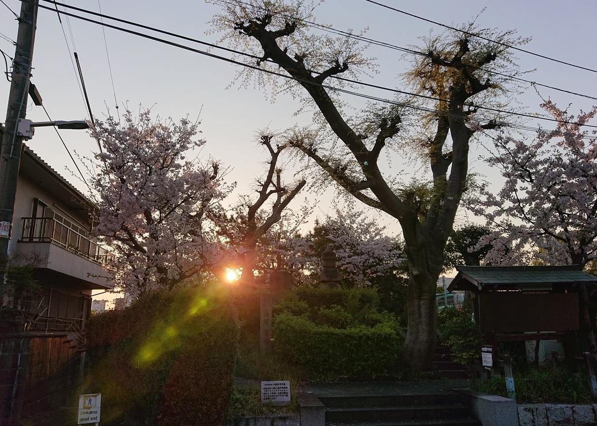 f:id:Kaimotu_Hatuji:20200404182446j:plain