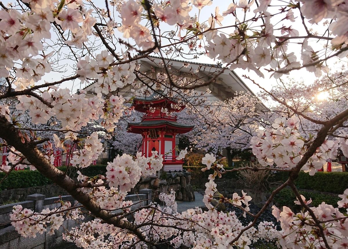 f:id:Kaimotu_Hatuji:20200404183446j:plain