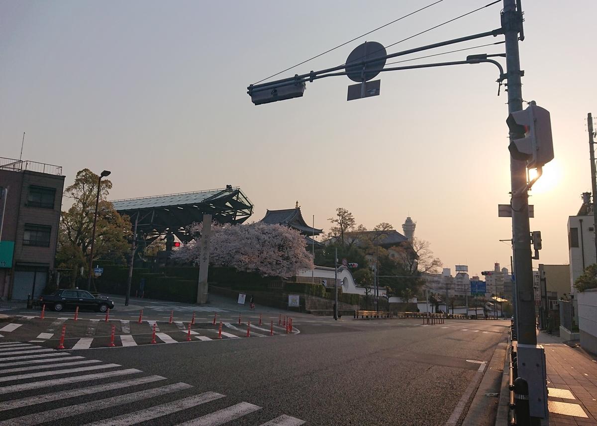 f:id:Kaimotu_Hatuji:20200408185104j:plain