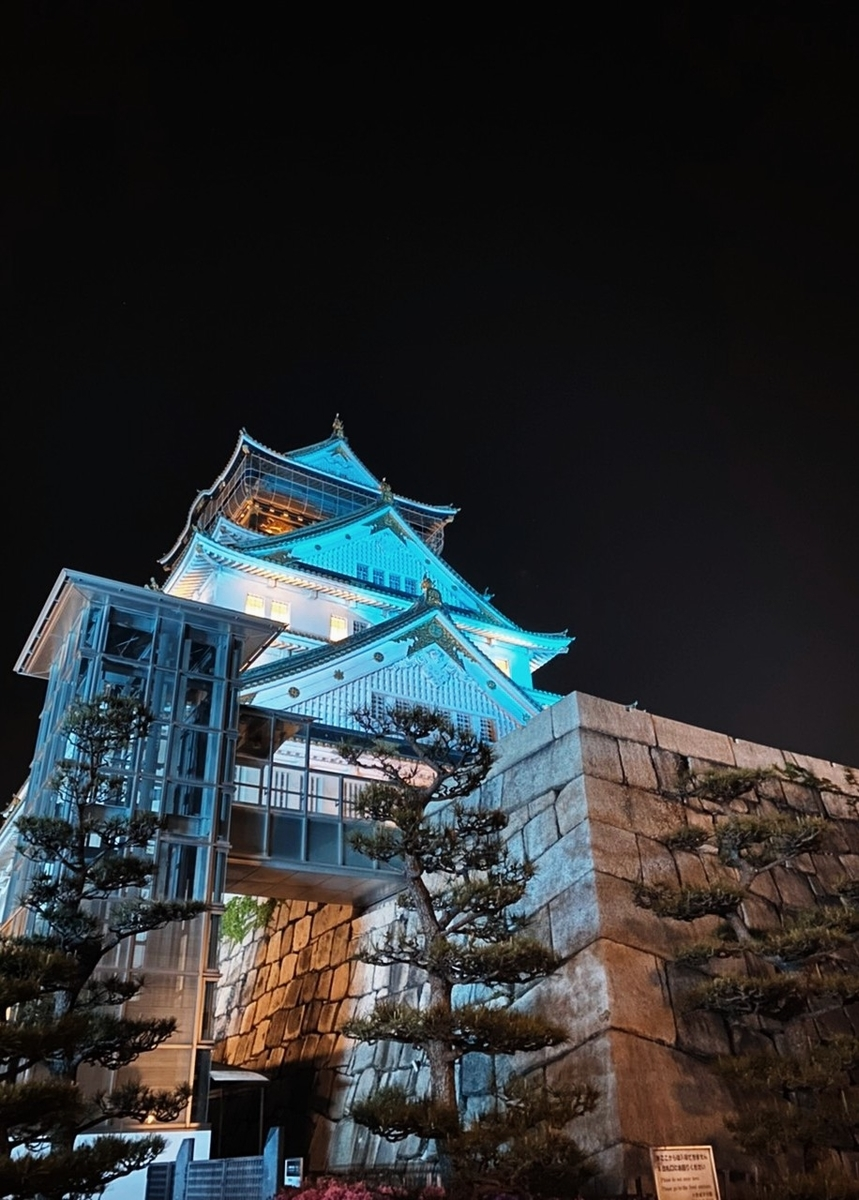 f:id:Kaimotu_Hatuji:20200501134829j:plain