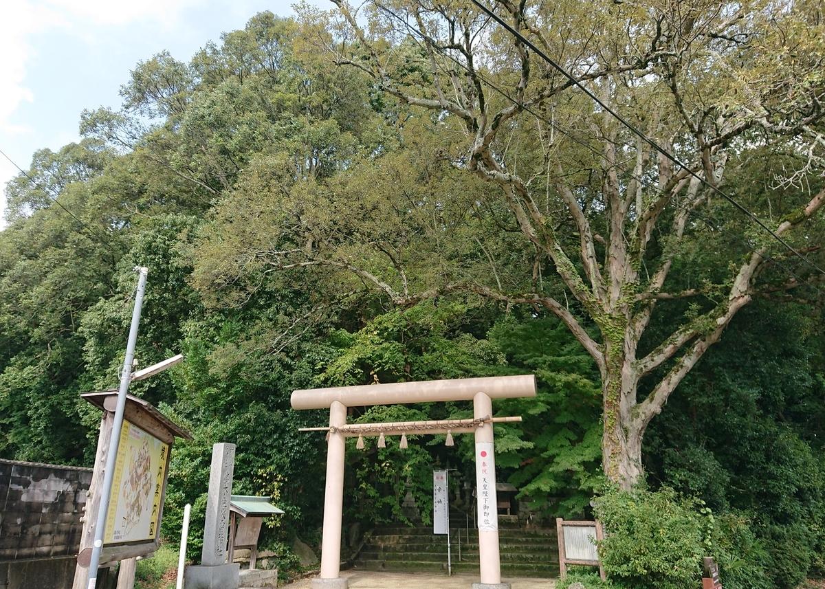 f:id:Kaimotu_Hatuji:20200502172630j:plain