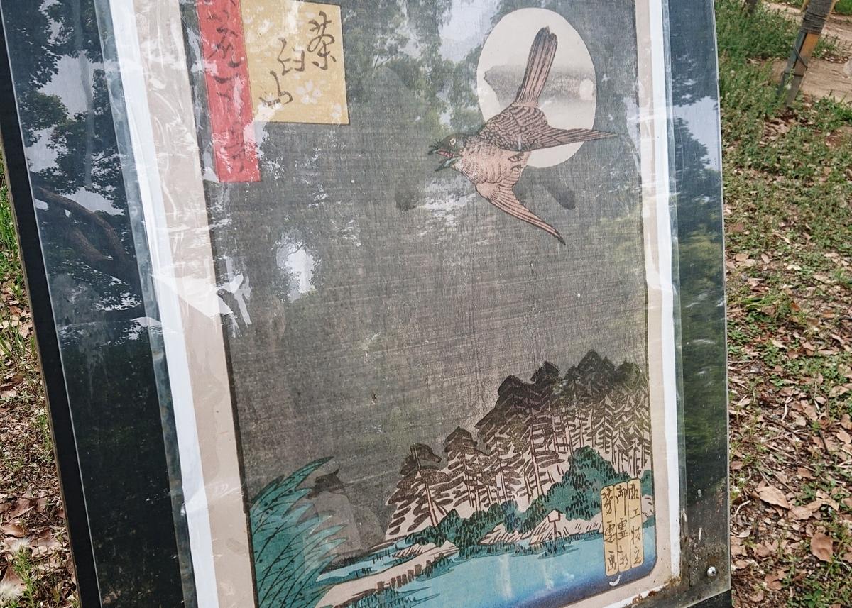 f:id:Kaimotu_Hatuji:20200523070150j:plain