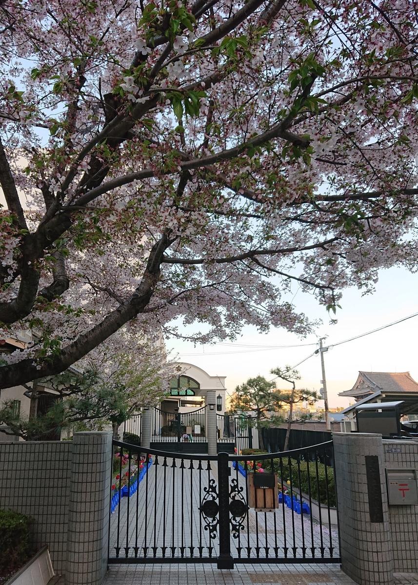 f:id:Kaimotu_Hatuji:20200601184433j:plain