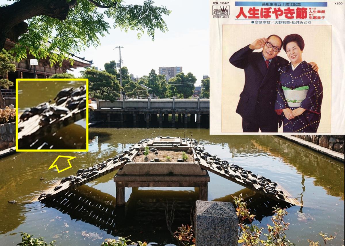 f:id:Kaimotu_Hatuji:20200607114433p:plain